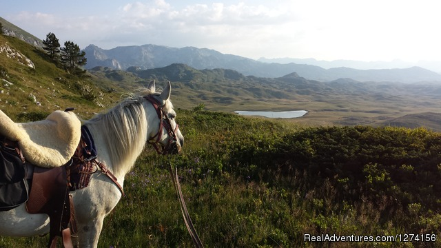 Horse riding at only ecological country,Montenegro