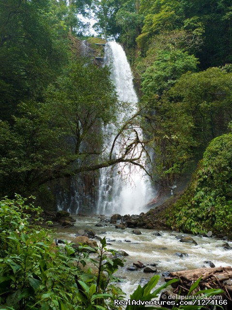 Los Chorros Waterfall - Finca Vibran B&B- On the slopes of Poas Volcano