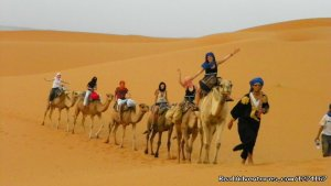 Desert Tours - Morocco Vacation -Holiday in Morocc Marrakech, Morocco Wildlife & Safari Tours