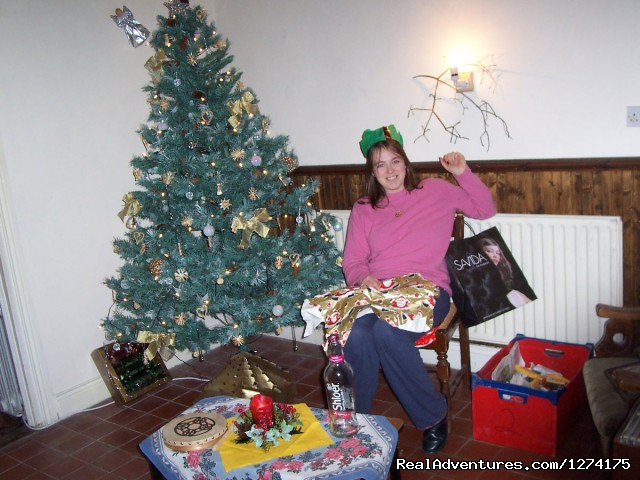 Christmas at the Cottage - Little peace of Heaven in Tipperary, Ireland
