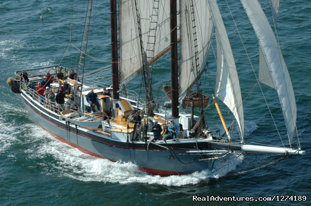 Maine Windjammer Sailing Adventures