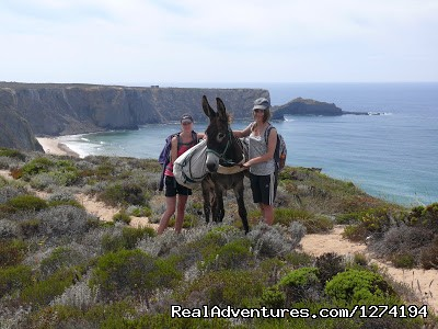 From Aljezur to the End of Europe/Cape St Vicente (#2 of 3) - Donkey Hike Portugal - Best Nature Experience