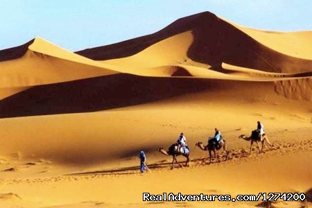 travel in Morocco, desert tours , camel trekking