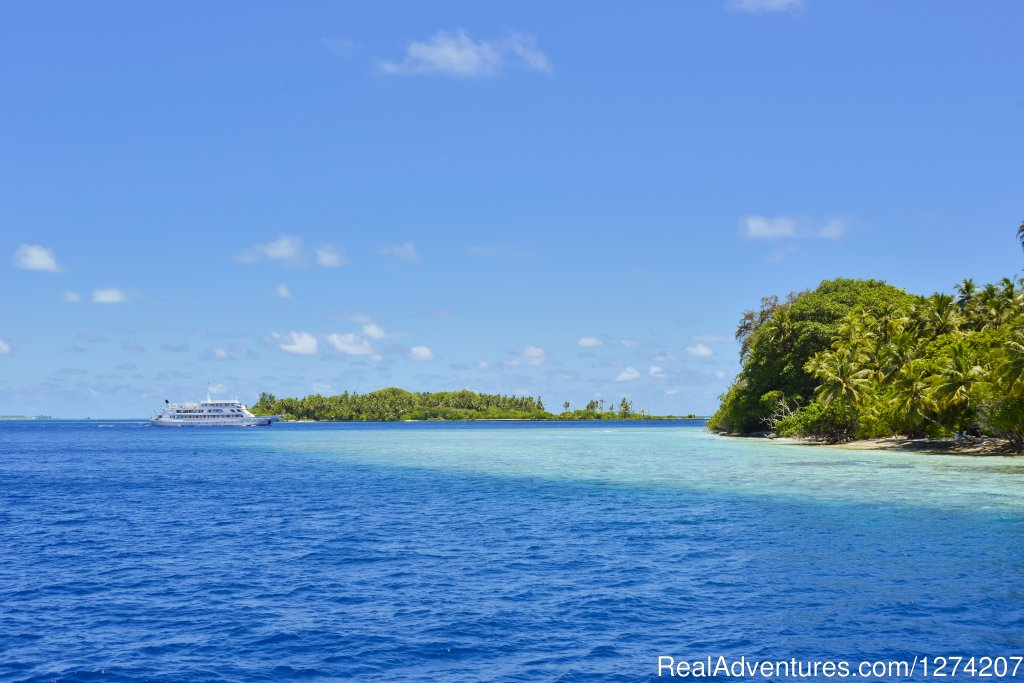 Image #4/14 | Explore the Maldives on MV Yasawa Princess