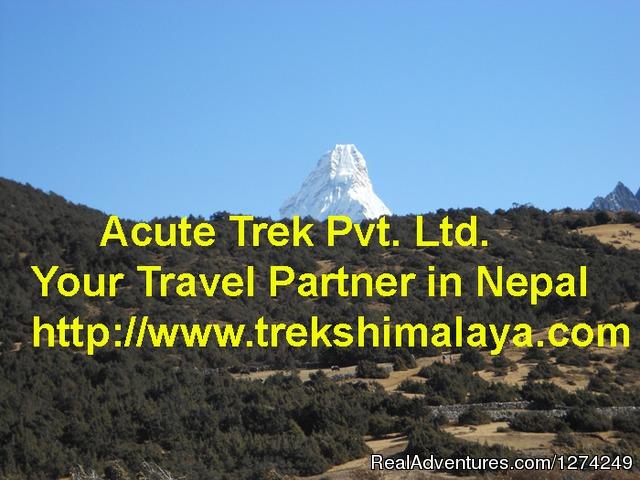 Acute Trek Pvt. Ltd. - Treks Himalaya Acute Trek Pvt. Ltd. - Treks Himalaya