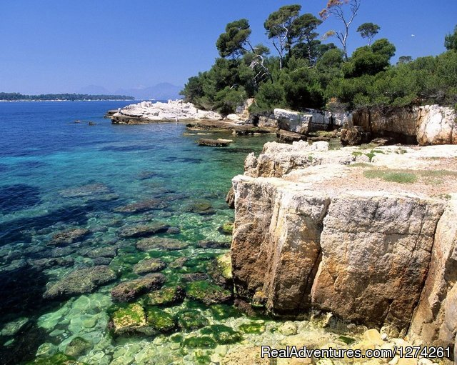 Yoga and Detox Bliss by the sea, Cap d'Antibes Antibes, France Detox Retreats