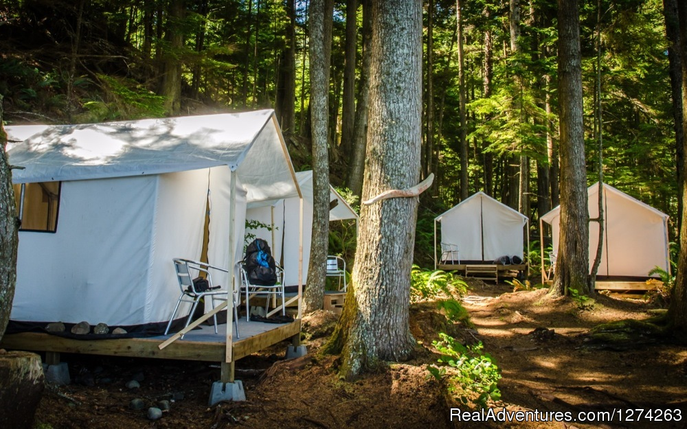 Safari Tents at Orca Camp | Image #3/19 | Wildcoast Adventures - kayak vacations & adventure