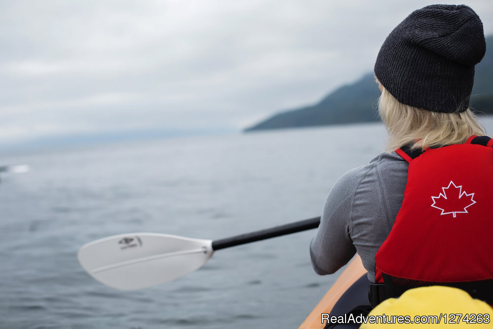 Kayaking in Johnstone Strait | Image #1/19 | Quathiaski Cove, British Columbia  | Kayaking & Canoeing | Wildcoast Adventures - kayak vacations & adventure