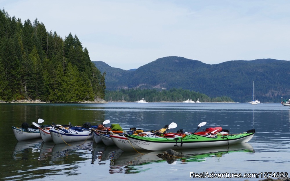 Kayaking Read Island British Columbia Canada | Image #16/19 | Wildcoast Adventures - kayak vacations & adventure