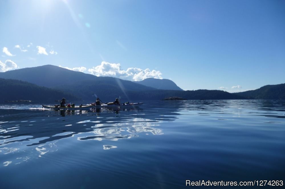 Desolation Sound, BC Sea Kayaking | Image #17/19 | Wildcoast Adventures - kayak vacations & adventure