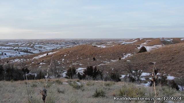 Image #14 of 19 - Western Experience at Cedar Breaks Ranch