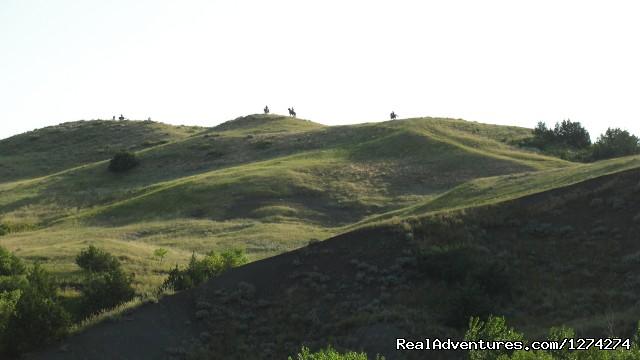 Image #13 of 19 - Western Experience at Cedar Breaks Ranch