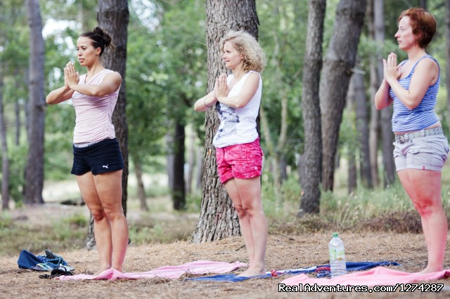 Yoga in the pine forest - Surf & Yoga