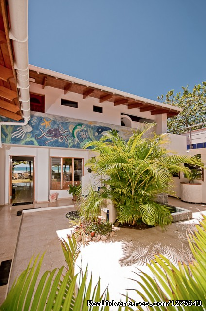 Inner Courtyard - Spectacular Oceanfront Multi-Level 5 Bed Villa