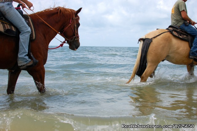 Image #3 of 7 - Horseback Riding on the Beach