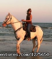 Image #4 of 7 - Horseback Riding on the Beach