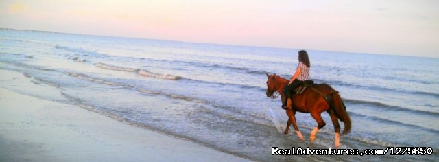 - Horseback Riding on the Beach