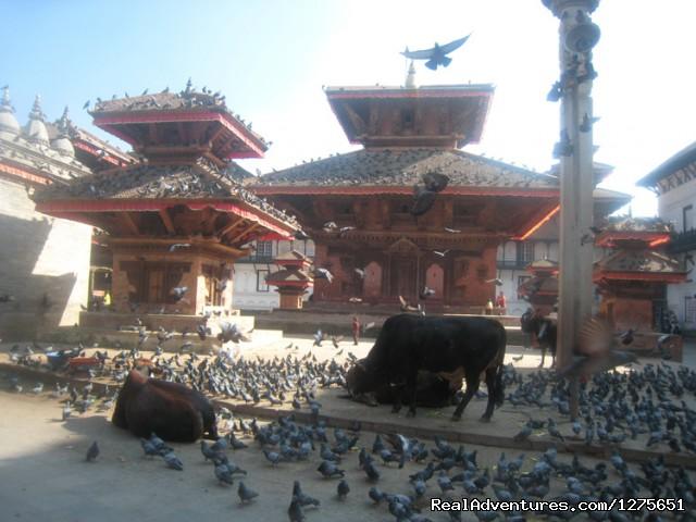 Kathmandu Durbar - Kathmandu World Heritage Sightseeing - Day Tours