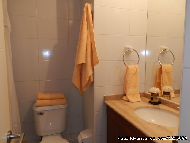 Bathroom - Best Location furnished Apartment Santiago Chile