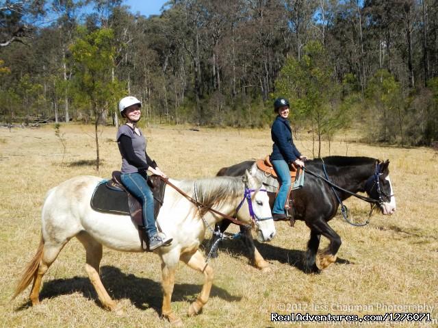 Horse Riding Tours Melbourne