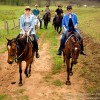 Horse Riding in the Hunter Valley