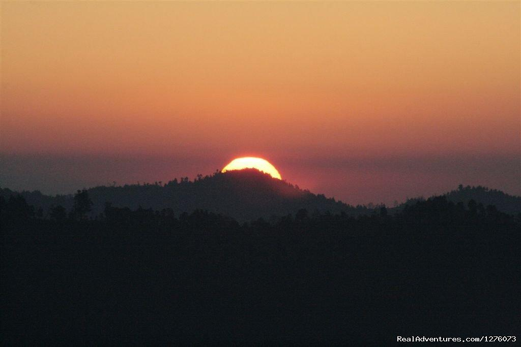 Image #15/26 | Corbett National Park