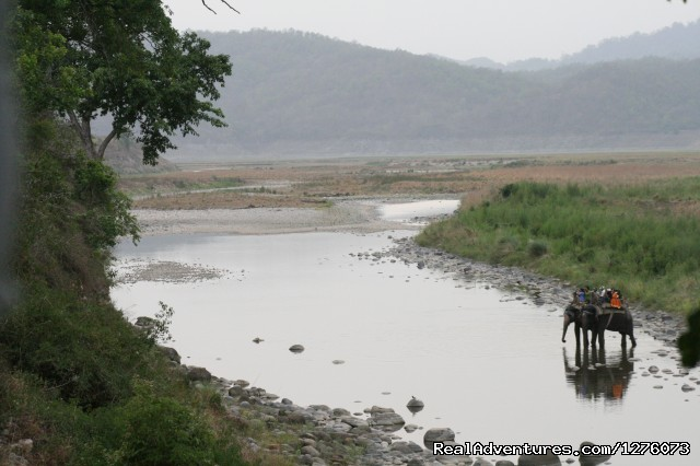 Image #10 of 26 - Corbett National Park