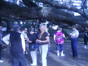 Van and Motorcoach tours Sight-Seeing Tours Green Cove Springs, Florida