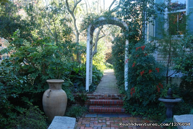Stroll our gardens (#2 of 7) - Camellia Cottage Bed and Breakfast