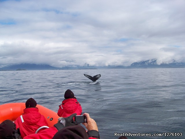 No Window Seats - Outdoor Recreation Excursions from Sitka Alaska