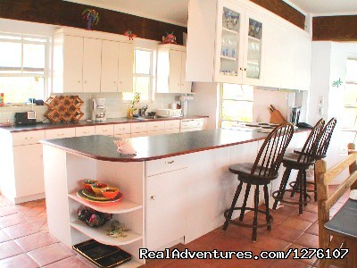 Kitchen - South Sound Luxury Waterfront Villa Virgin Gorda