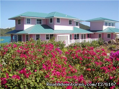 Flowers Everywhere (#8 of 14) - South Sound Luxury Waterfront Villa Virgin Gorda