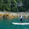 Stand Up Paddleboard Adventure in Juneau, Alaska Alaska Eco Tours
