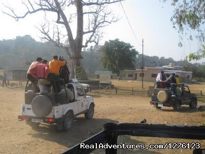 - Jim Corbett National Park Tour