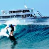 Maldives boat trips. ( Surfing , Diving , Fishing) Surfing Maldives