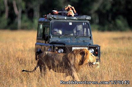 The Big Five Tour - The Best  Africa Safaris at Africa Getaway Safaris