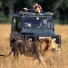 The Best  Africa Safaris at Africa Getaway Safaris