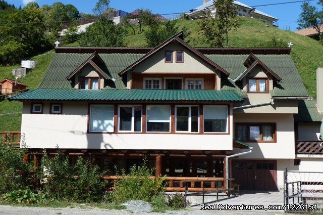 Transylvanian Chalet close to Bran Castle B&B