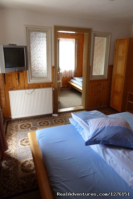 Apartment - Transylvanian Chalet close to Bran Castle B&B