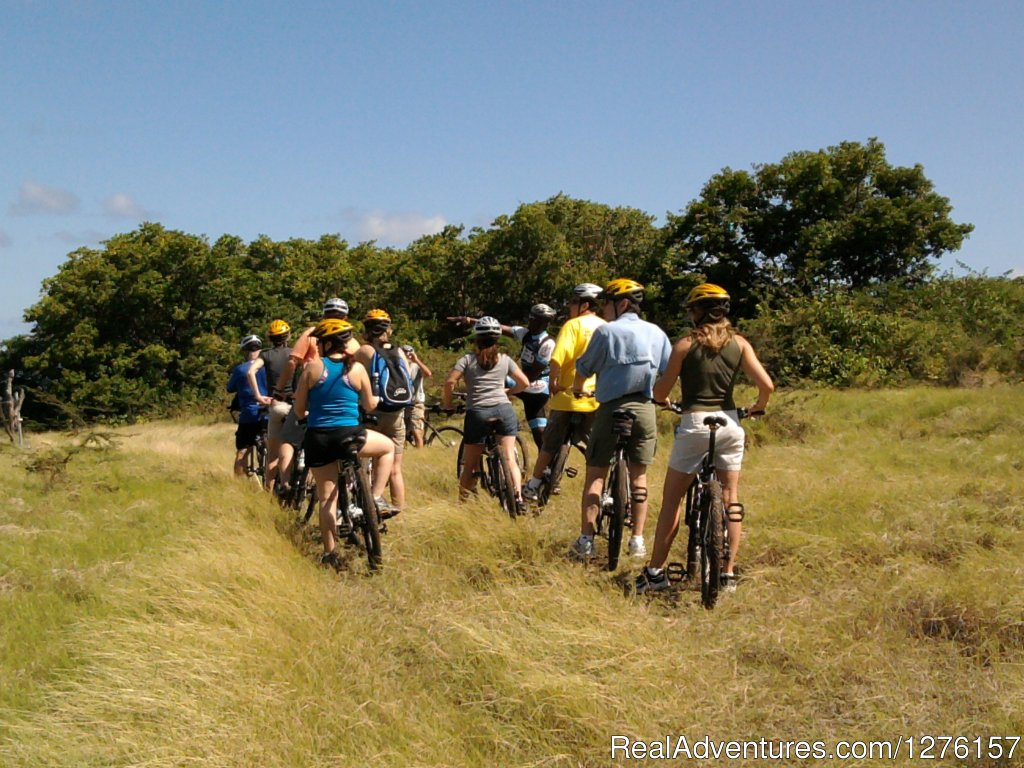 Image #3/12 | Nevis Bike Tours and Rentals