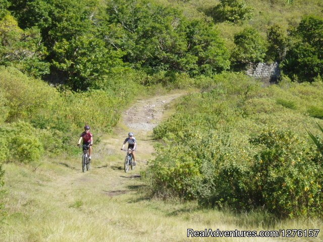 Image #4/12 | Nevis Bike Tours and Rentals