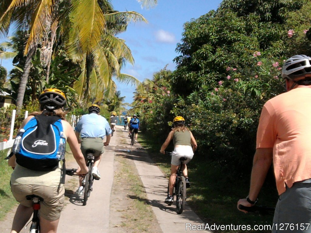 Image #7/12 | Nevis Bike Tours and Rentals