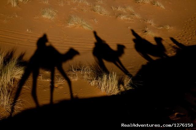 Bouaouina Tours-Morocco Camel trekking and desert Experiences