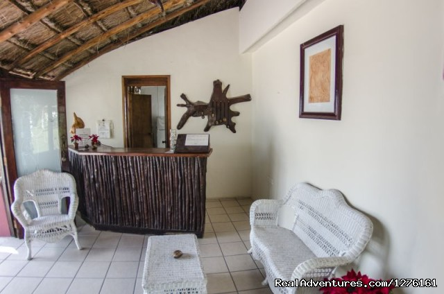 Reception - Maya Inn Holbox