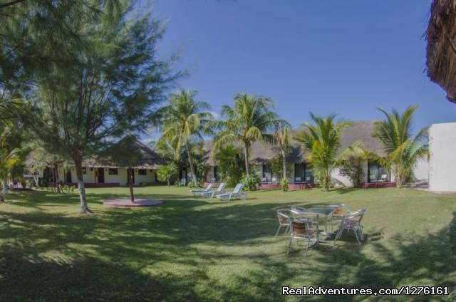 Garden - Maya Inn Holbox