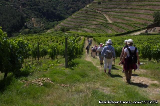 Hiking in Douro (#12 of 26) - Douro Heritage Hike