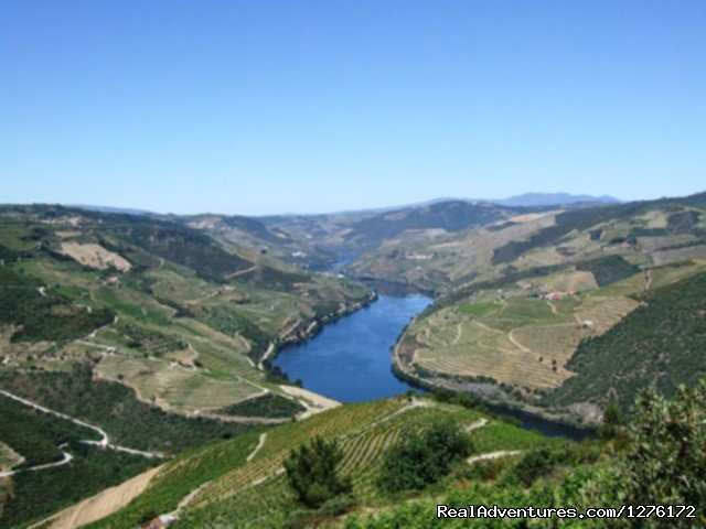 Douro Landscape (#18 of 26) - Douro Heritage Hike