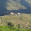 Landscape Douro