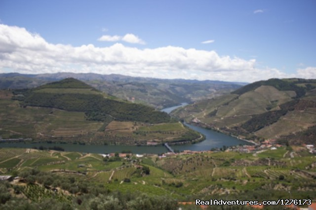 Douro, the Old Ways Douro Landscape