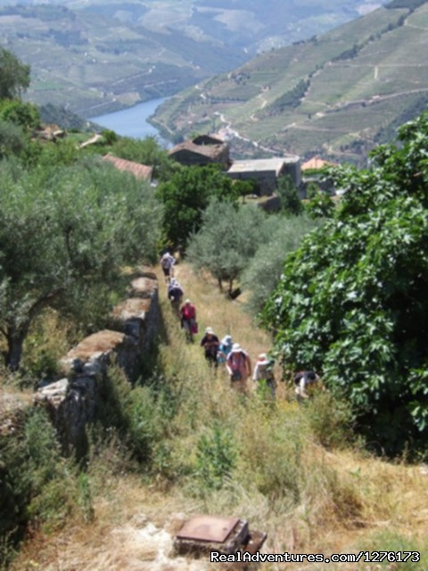 Image #4 of 26 - Douro, the Old Ways